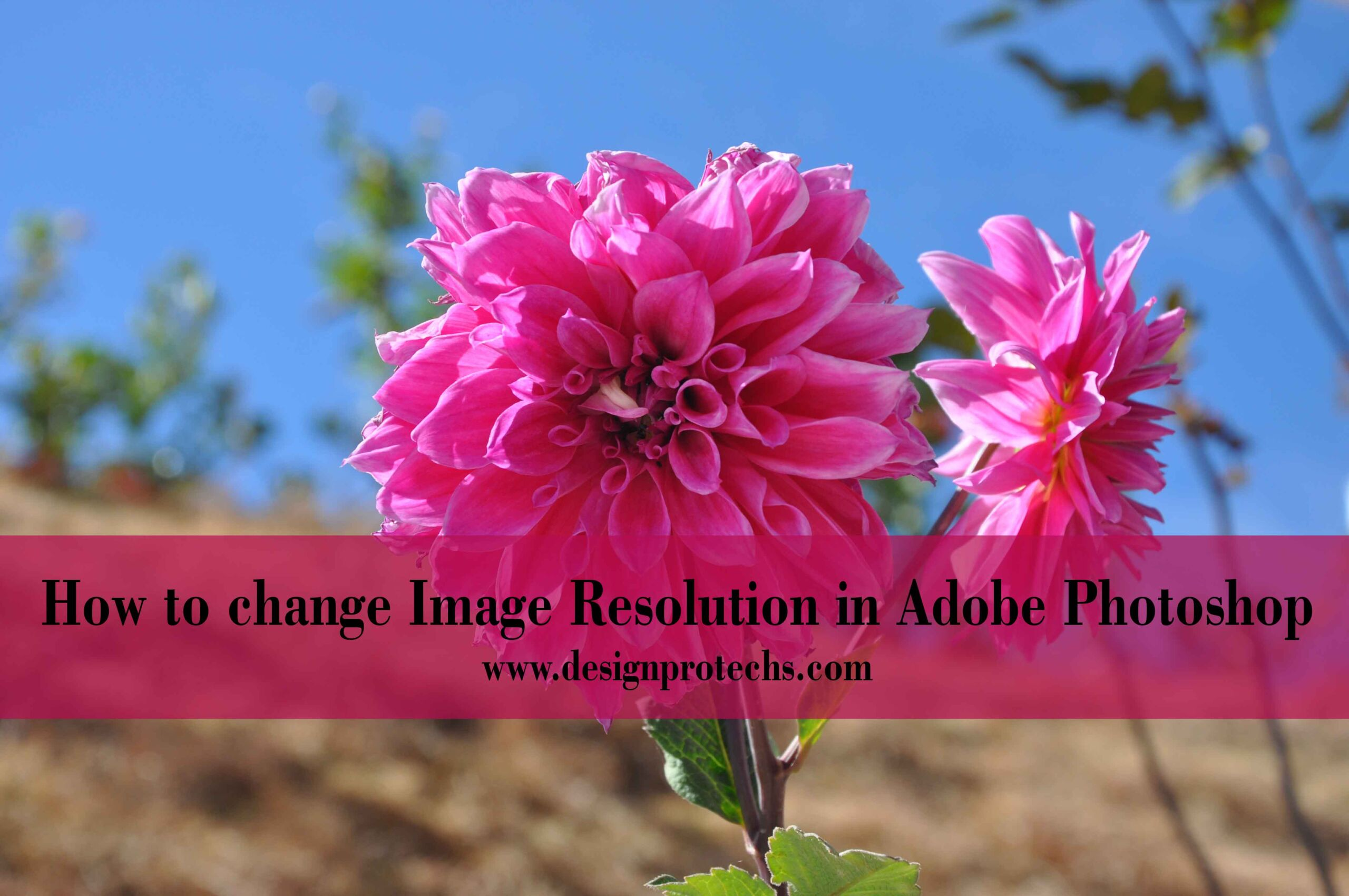 how-to-change-image-resolution-in-photoshop